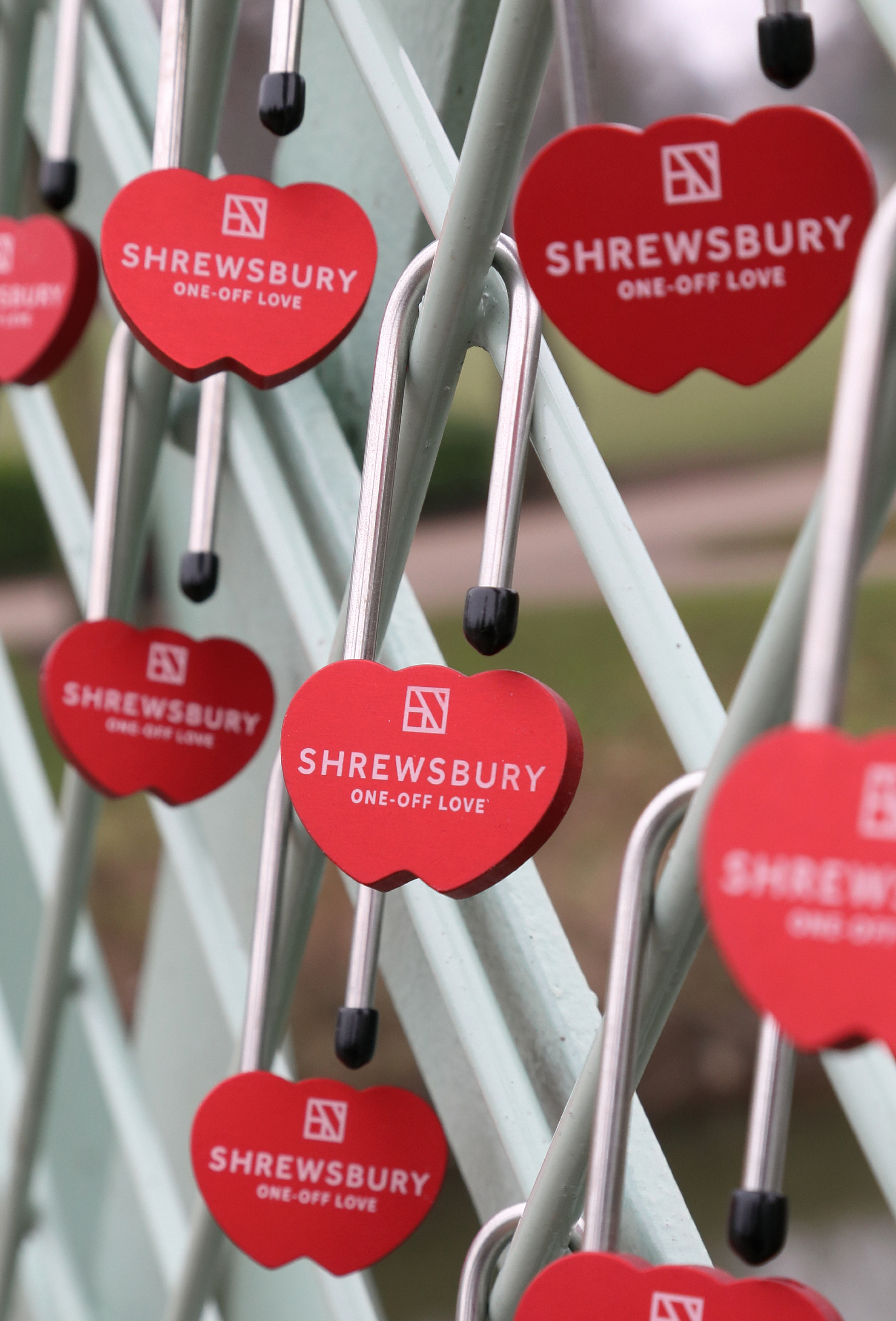 Love locks in Shrewsbury, Shropshire. Valentine's Day. Quarry Park