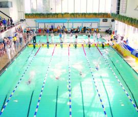 Quarry Swimming Pool consultatation debate Shrewsbury