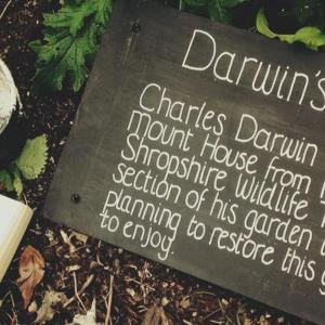 Narrating Darwin's Childhood Garden