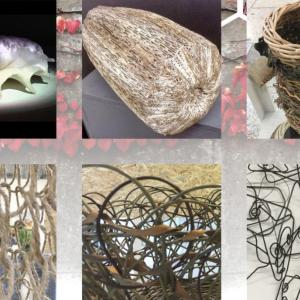Scaffolds of Nature II