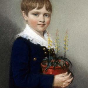 Young Darwin and Shrewsbury Exhibition Launch Party