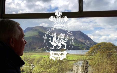 Ffestiniog Railway - Brand & Website Design